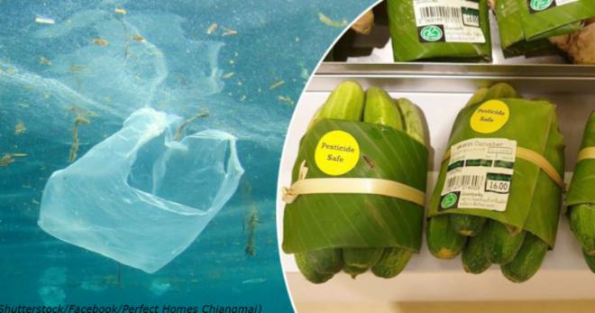 Тайский супермаркет заворачивает покупки в банановые листы – вместо пластика