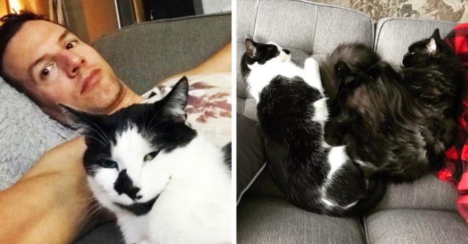Канадец проверил, скучают ли коты, когда его нет дома. Он записал видео, и от него грустят и люди, и коты