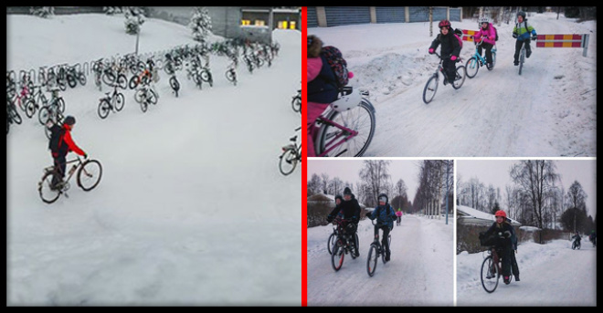 «Антифриз в крови»: финские дети ездят в школу на велосипедах при -17C
